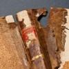 Oštećena knjiga (foto: Branko Hrkač)